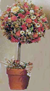 dried floral tree