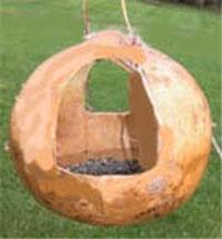 gourd bird feeder